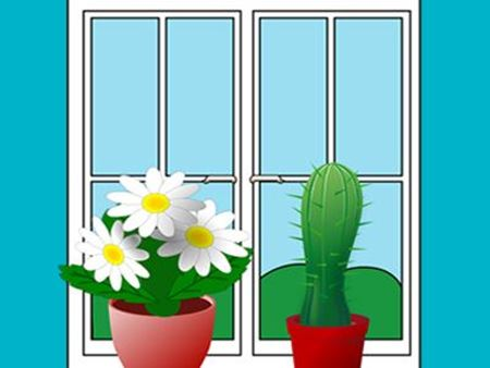 Picture for category Fenster